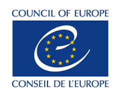 Council of Europe Publication - the rights of the child in the digital environment